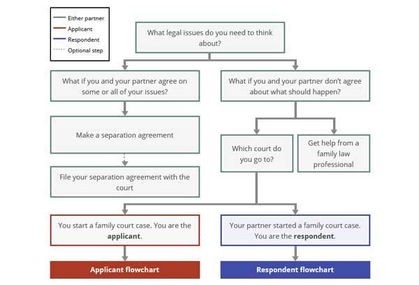 Steps in a Family Law Case chart